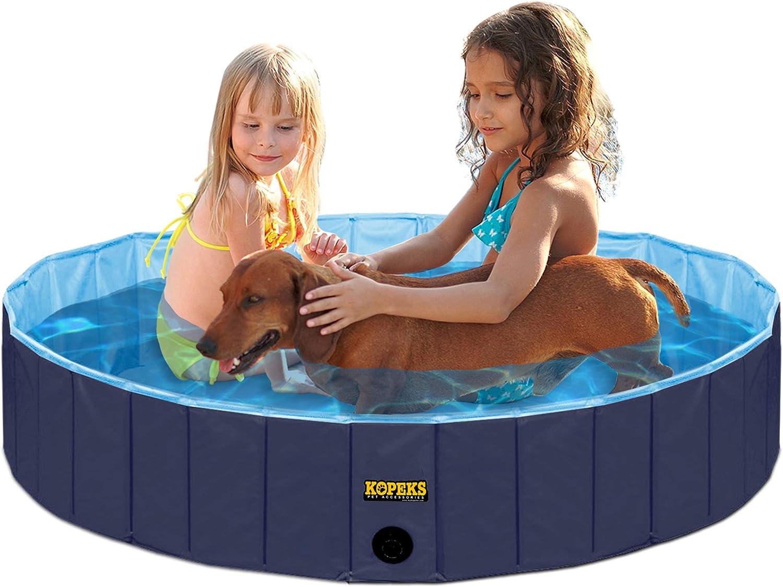 piscina para perros de color azul con golden retriever dentro y dos niñas en bañador