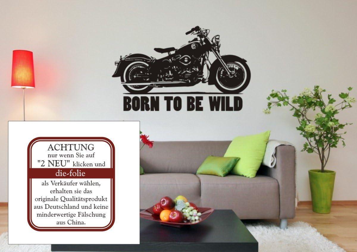 Born To Be Wild con Harley Davidson – pared – Adhesivo Pared Adhesivo, Moto, vinilo, M070 Schwarz, 980 mm x 600 mm: Amazon.es: Hogar