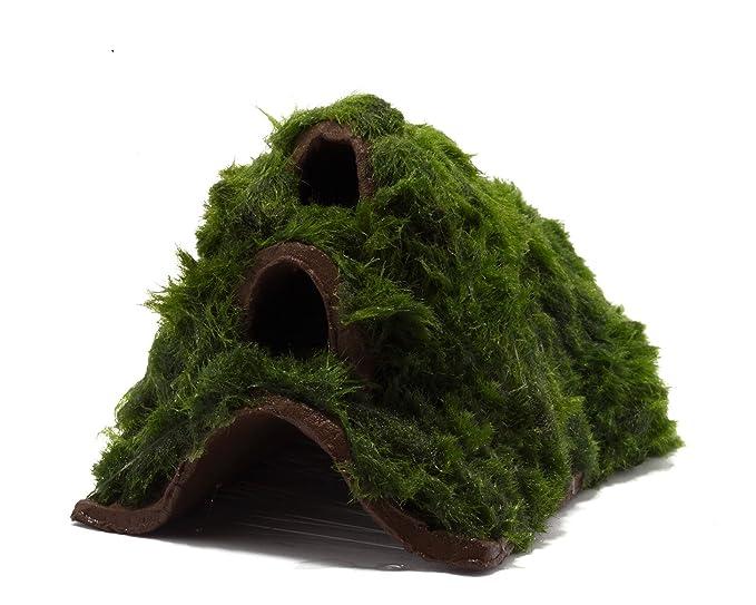 Auenland - Refugio para gambas - Cueva decorativa con algas para acuario: Amazon.es: Productos para mascotas
