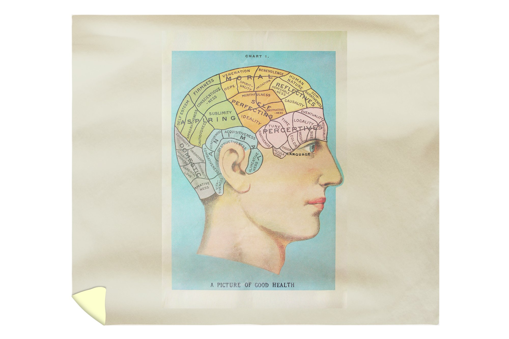A Picture of Good Health - Vintage Cognitive Science Lithograph (88x104 King Microfiber Duvet Cover)