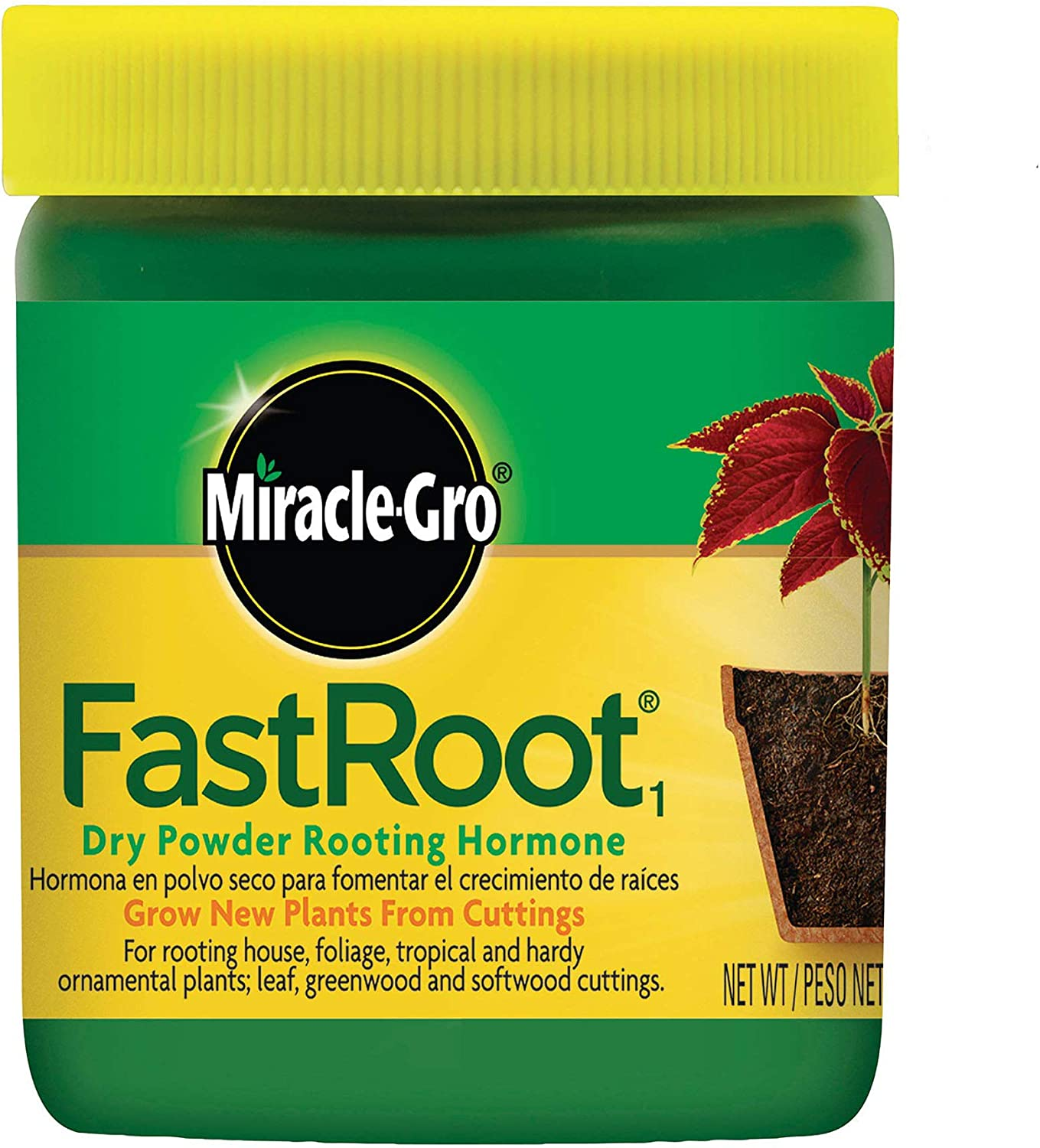 Miracle-Gro FastRoot1 Dry Powder Rooting Hormone 1.25 oz., Houseplant and Succulent Propagation, for Rooting House, Foliage, Tropical, and Hardy Ornamental Plants : Root Tone : Garden & Outdoor