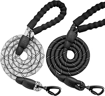 BAAPET 4 FT Strong Dog Leash with Comfortable Padded Handle and Highly Reflective Threads Heavy Duty Dog Leashes for Medium Large Dogs with Poop Bags