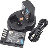 DSTE DMW-BLF19 DMW-BLF19E バッテリー 2個 + 互換急速 デュアルUSB充電器 (2個同時充電可能) Panasonic Lumix G9 DC-G9GK-K DMC-GH3 DMC-GH4 など対応