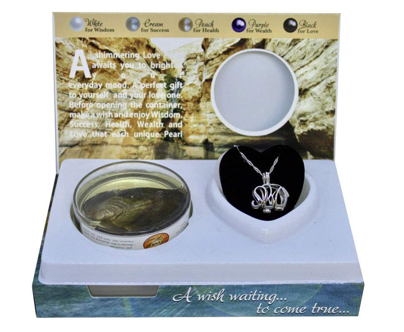 Seahorse Love Pearl Creations Animals Wish Kit with Pendant Necklace