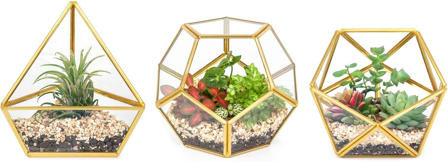 Mkono Mini Glass Geometric Terrarium Container Set of 3 Modern Tabletop Planter Windowsill Decor Shelves DIY Display Box Centerpiece Gift for Succulent Air Plant Miniature Fairy Garden, Gold, 5""