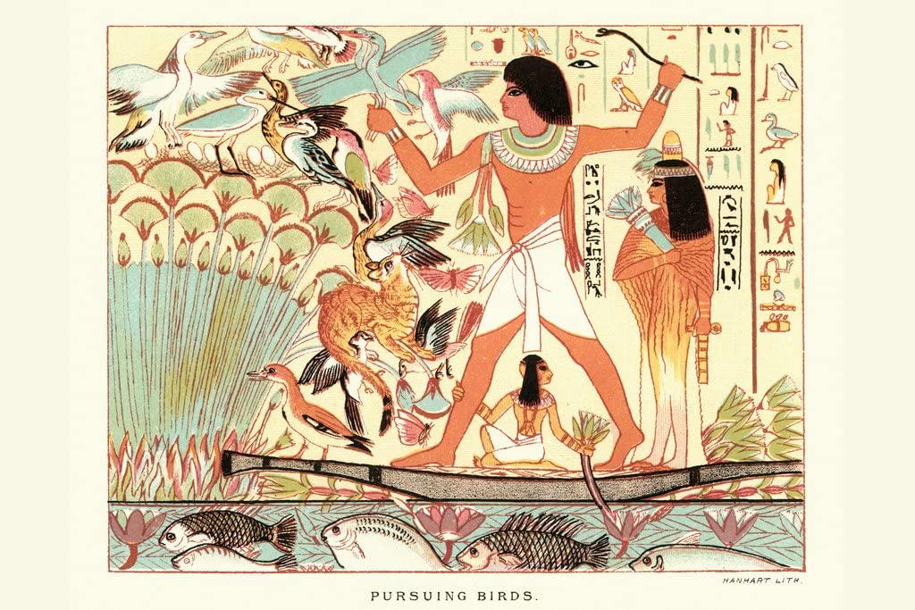Ancient Egyptians Hieroglyphics Hunting Birds Cool Wall Decor Art Print Poster 18x12