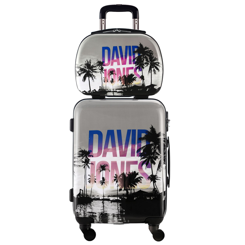 DAVIDJONES 2 Piece Hardside Upright Spinner Luggage Set-PALMIER