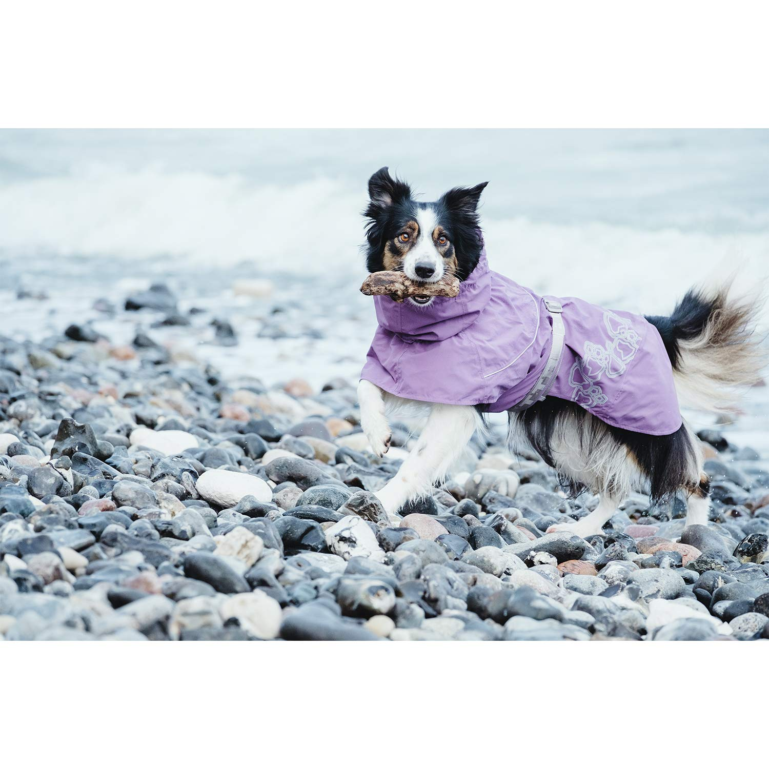 Hurtta Drizzle Coat, Dog Raincoat, Currant, 18 in by Hurtta (Image #2)