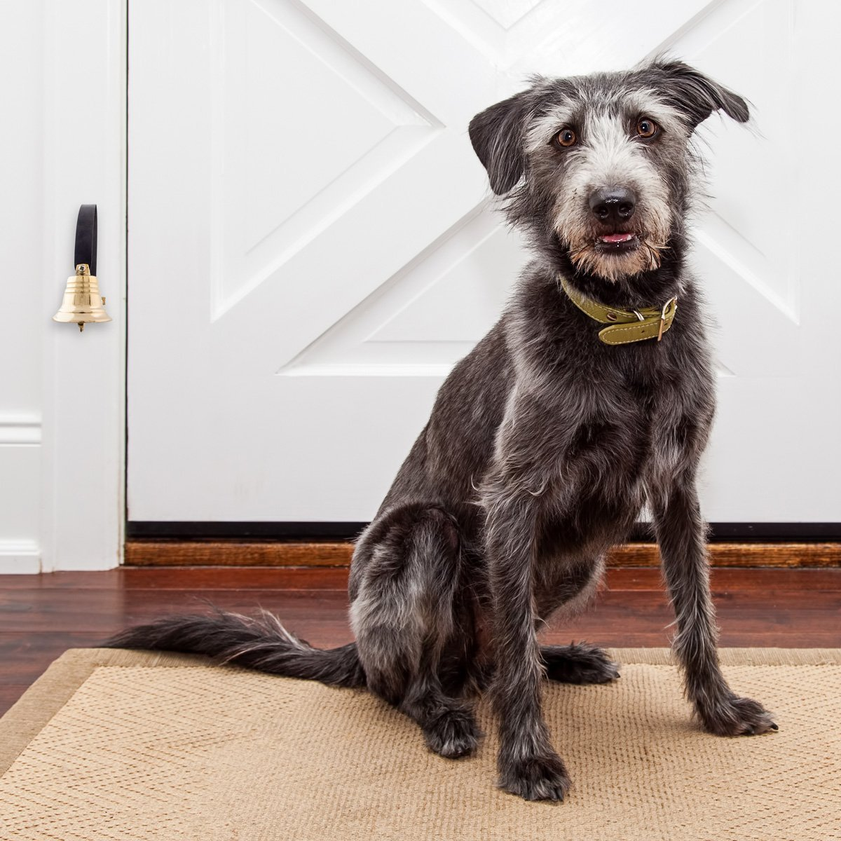 Dog Doorbell - GoGo Bell Deluxe with Solid Brass Bell For Loud Clear Tone by Dog Doorbell (Image #3)