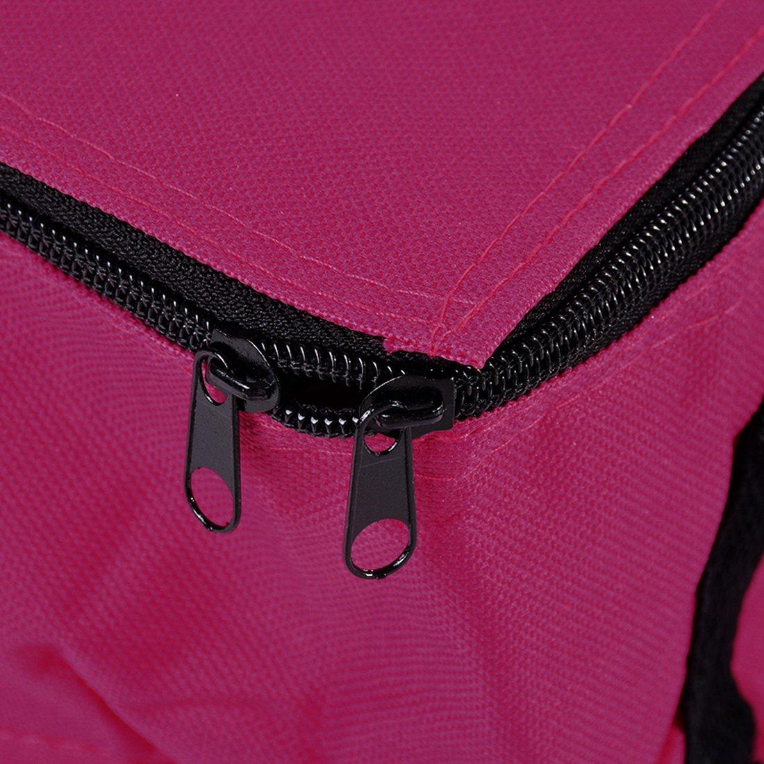 sexyguys Rose Sfit Sac Repas Isotherme Lunch Bag Portable Pliable pour Famille de Voyage Barbecue Camping Pique-nique