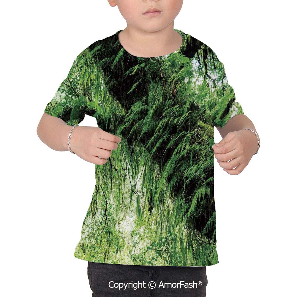 Rainforest Decorations Colorful Boys and Girls Soft Short Sleeve T-Shirt,Idyllic