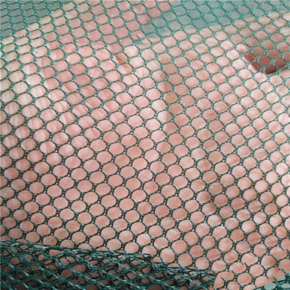 Reuvv Faltbar Drop Netz Kescher Garnele K/öder Krabbe Schrimps Kai Harbour Teich Netzgewebe