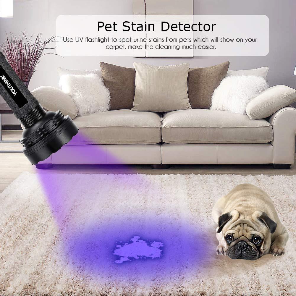 Classe di efficienza energetica A YOUTHINK Torcia UV 100 LED Luminosi Rilevatore di Urina per Macchie di Animali Domestici con