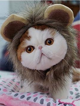 El realista Pet Costume Lion Mane peluca sombrero para pequeño perro ...