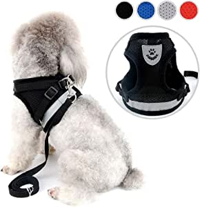 Zunea No Pull Dog Harness for Small Dog Cat Reflective Breathable Soft Mesh Padded Step-in Vest Harnesses Leash Set, Puppy Kitten Lead Escape Proof for Daily Walking Black XS