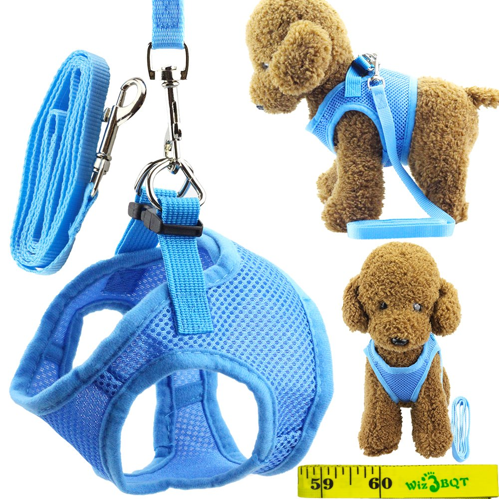 Wiz BBQT Soft Adjustable Mesh Dog Puppy Cat Pet Vest Harness and Leash Set for Dogs Cats Pets (B, Blue)