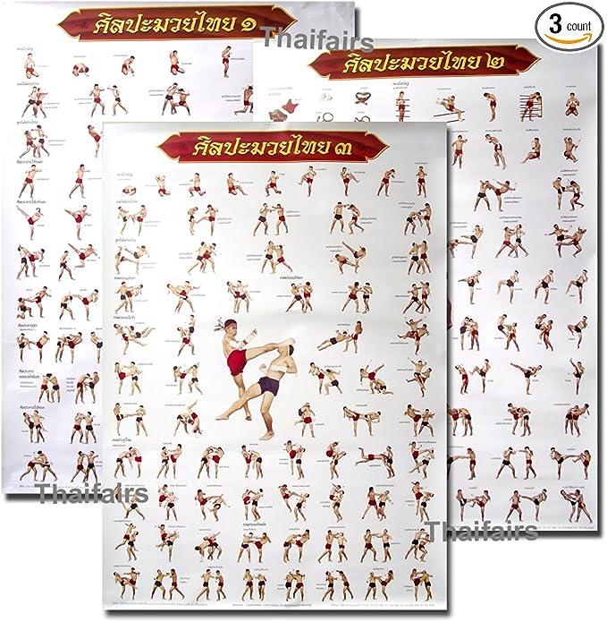 Poster Muay Thai Kick Boxing Set 4 pcs Technical Training Tactic Fighter Martial