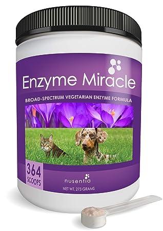 Nusentia Las enzimas digestivas para Perros - Enzima Milagro ...
