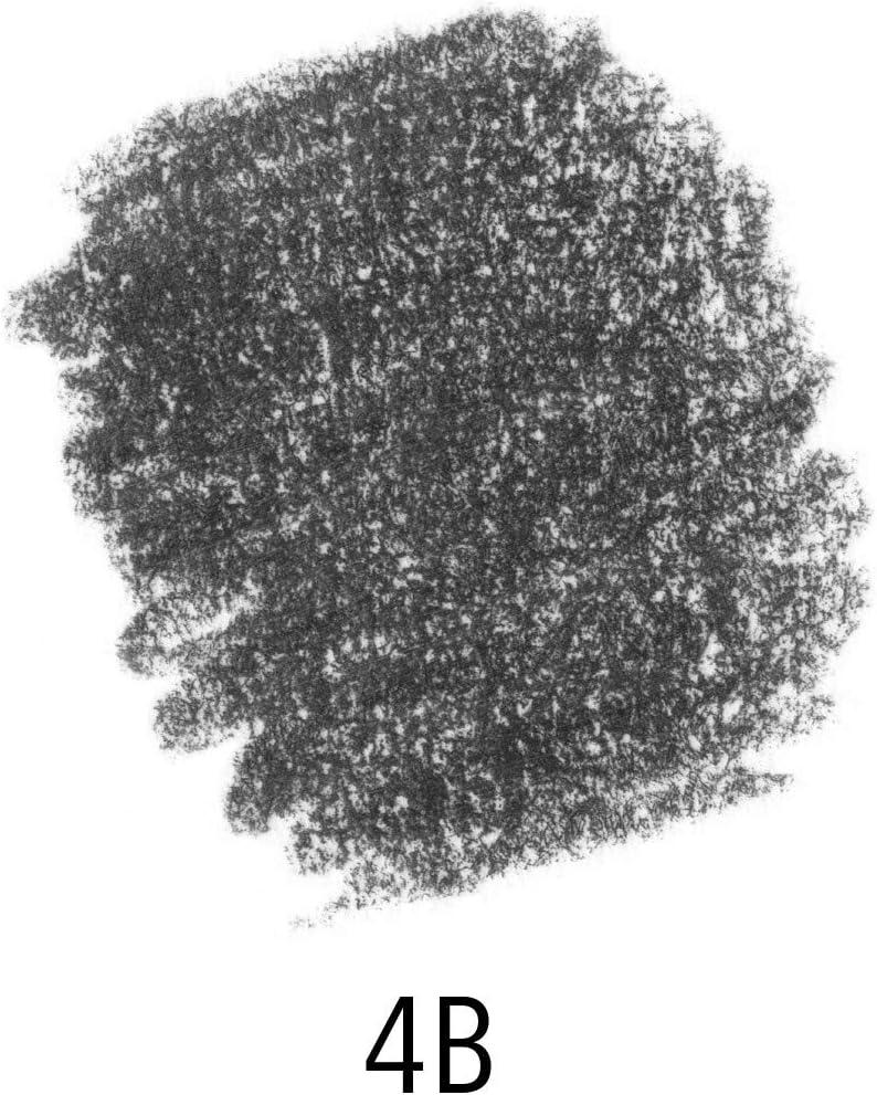 Sechskantform H/ärtegrad 4B STAEDTLER 100J-4B Jumbo-Bleistifte Mars Lumograph jumbo 6 Stifte in Kartonfaltschachtel hohe Qualit/ät Made in Germany hohe Bruchfestigkeit