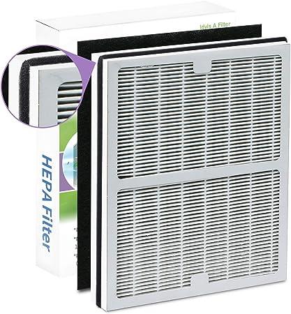 Filledwithlove Idylis purificadores de Aire compatibles AC-2119, IAP-10-100, IAP-10-150, IAPC-10-140 filtros de Repuesto, Modelo # IAF-H-100A, Incluye 1 HEPA y 1 Filtro de Carbono: Amazon.es: Hogar