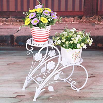 LRW European Style Iron Art Flower Stand Garden Double Floor Floor Pot Rack Indoor Living Room Balcony Flower Pot Rack: Garden & Outdoor