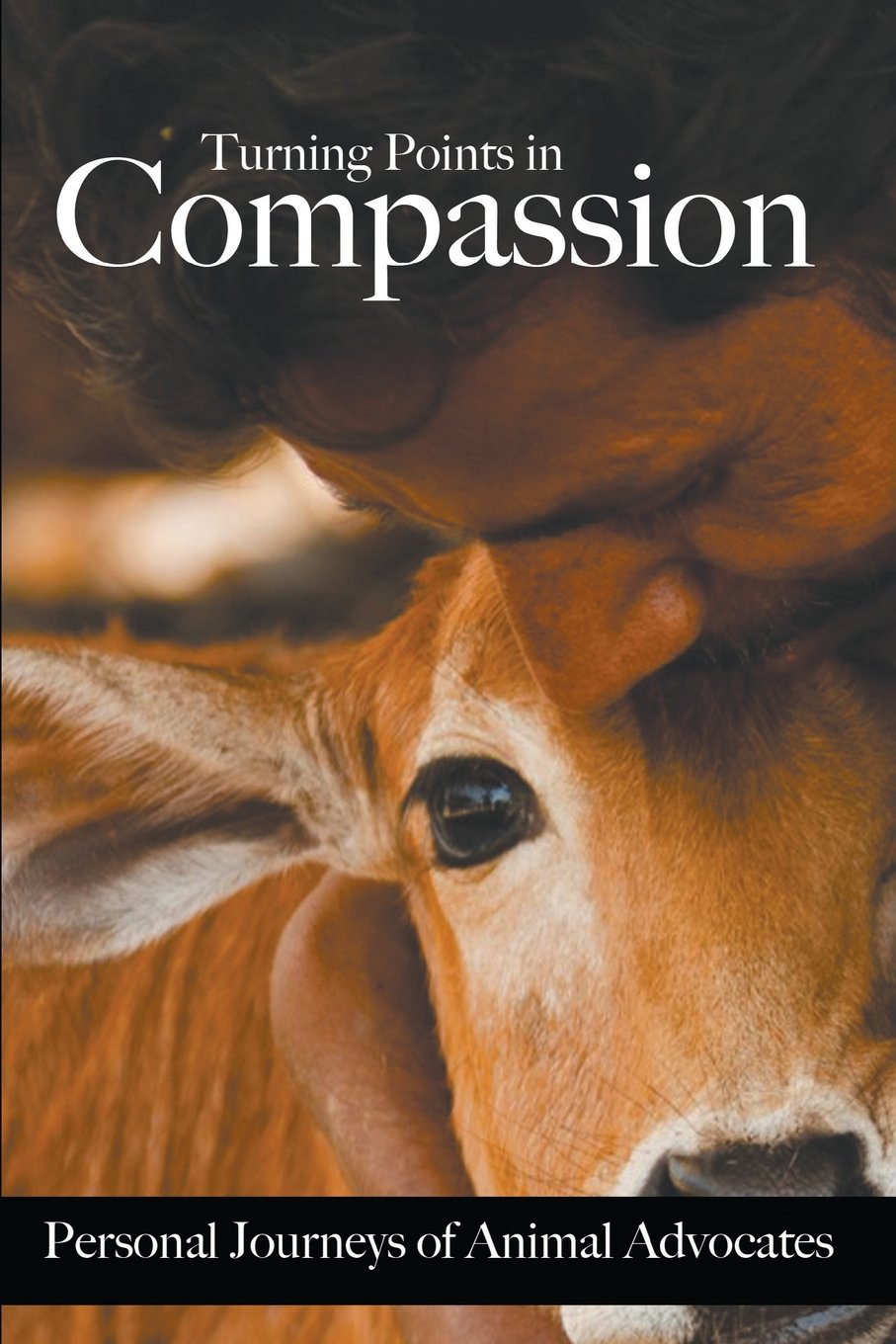 compassion essays dominus vobiscum et cum spiritu tuo god of mercy  turning points in compassion personal journeys of animal turning points in compassion personal journeys of animal