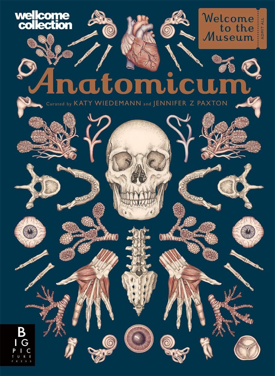 Anatomicum by Big Picture Press