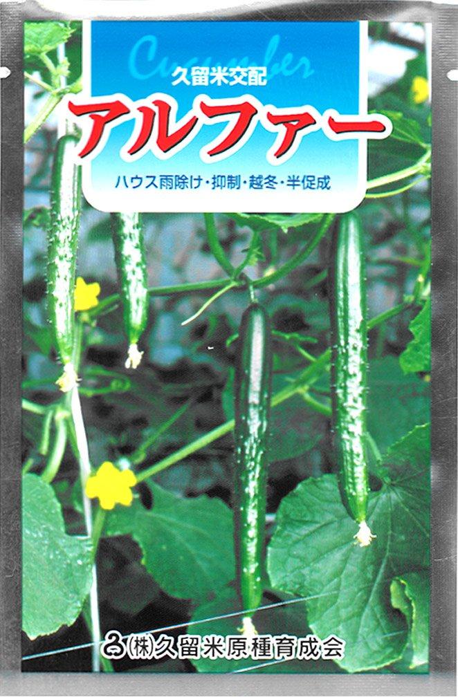 久育種苗 アルファー (きゅうり) 350粒詰 [久留米原種育成会] B014H0I2BW