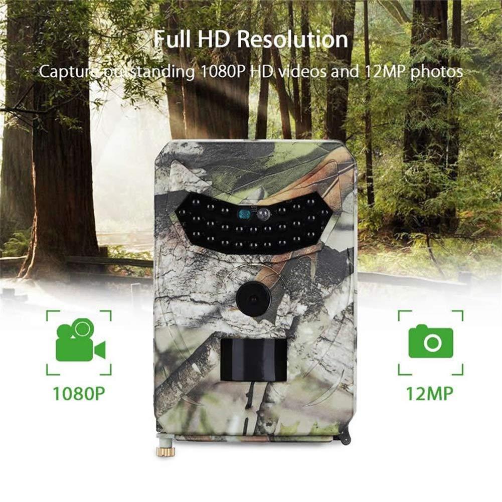 DWXJ Wildkamera Nachtsicht,1s Triggergeschwindigkeit IP66 Wasserdicht F/ür Die Au/ßen/überwachung Zuhause Hinterjagd Kamera