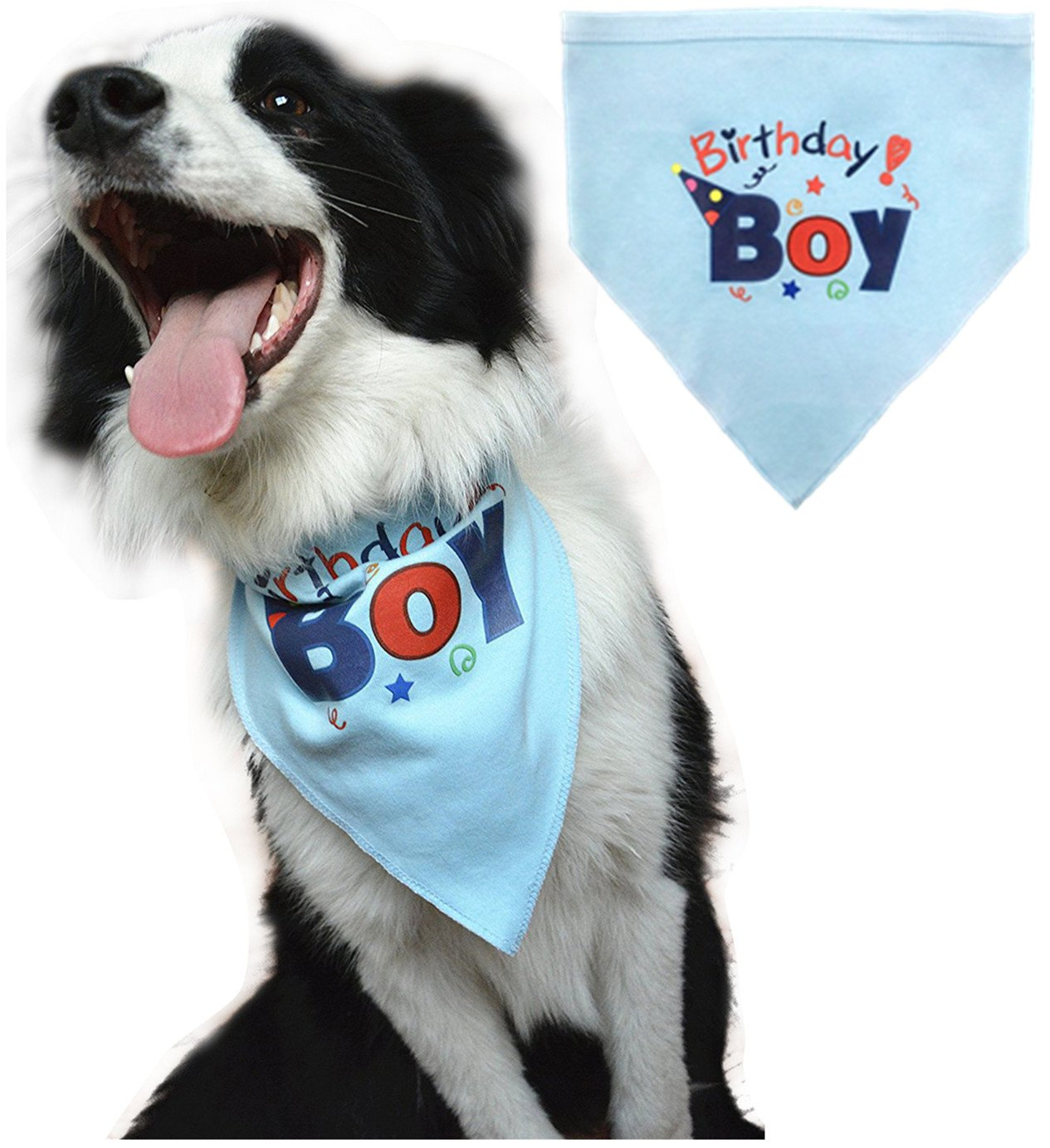 1st Birthday Shirts For Dogs