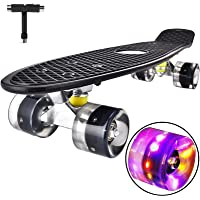 Highly Flexible Plastic Cruiser Board Mini 22 Inch Skateboards for Beginners or Professional with High Rebound PU Wheels