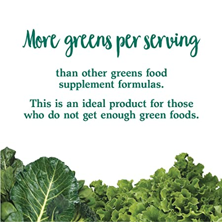 Amazon.com: Polvo Perfect Food Green Garden of Life Perfect ...
