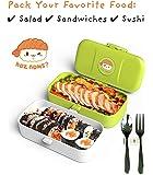 Amazon.com: Kotobuki 2-Tiered Bento Box, Green/Yellow
