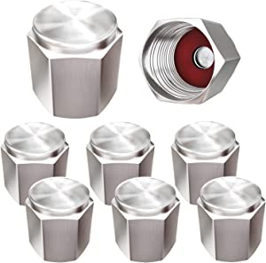 SAMIKIVA Brass (8 Pack) Tire Valve Caps Silver, Premium Metal Rubber Seal Tire Valve Stem Caps, Dust Proof Covers Universal fit for Cars, SUVs, Bike and Bicycle, Trucks, Motorcycles