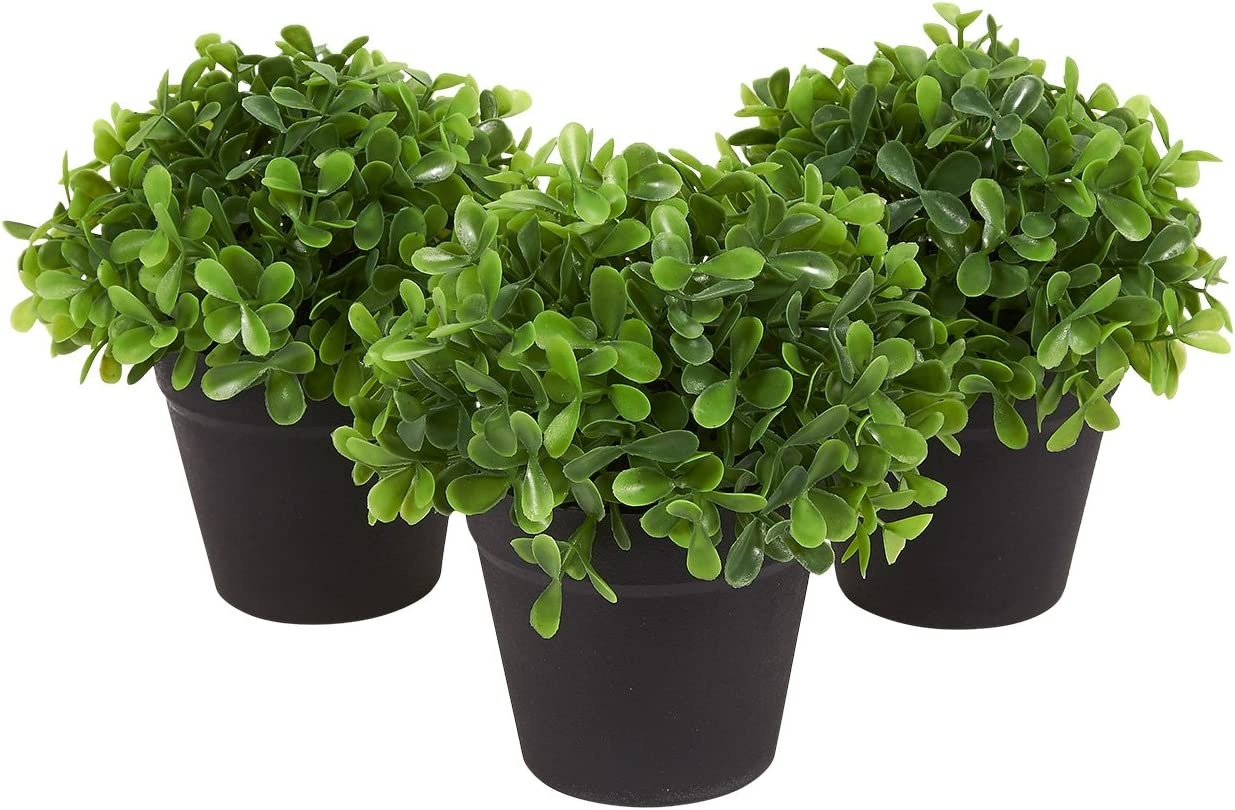 Juvale 3-Pack Mini Fake Plants Decoration, Potted Artificial Plants for Indoor Outdoor Home Décor, with Black Plastic Pots, 5 x 5.2 x 5 Inches -