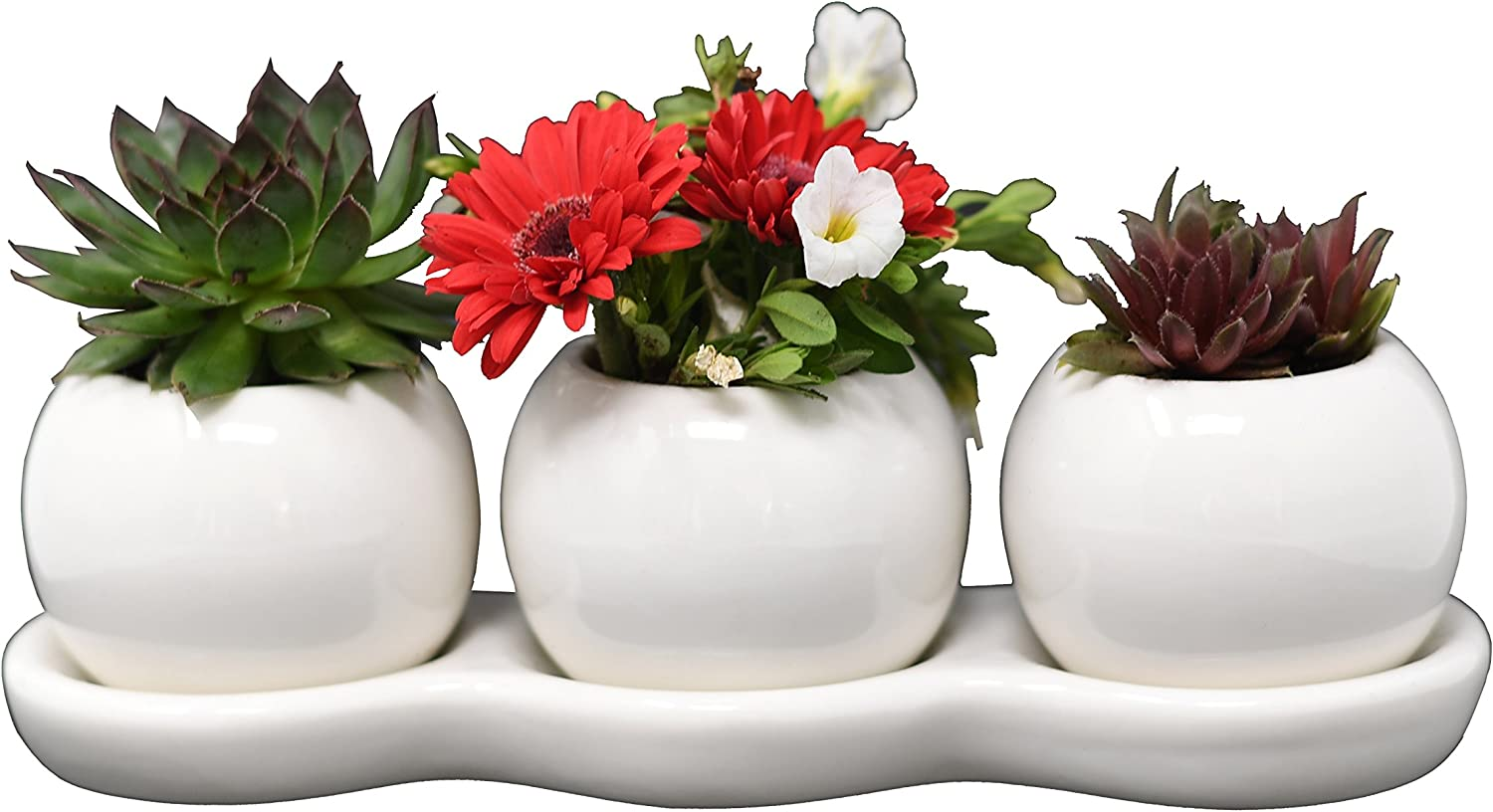 Ceramic Planters for House Plants-Plant Pots Set for Indoor & Outdoor Use (Round Set) by Arad