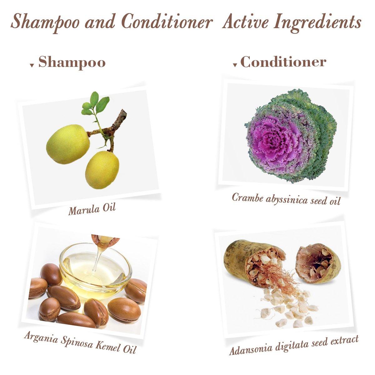 Luckyfine Kit Champú y Acondicionador - 2 botellas x 500 ml | Rico en Aceite de Marula, Tratamiento nutritivo y profunda para el cabello, reparación pelo, ...