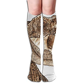 6a794999b8b Image Unavailable. Image not available for. Color  Tube Knee High Socks  Dinosaur Pattern Men s ...