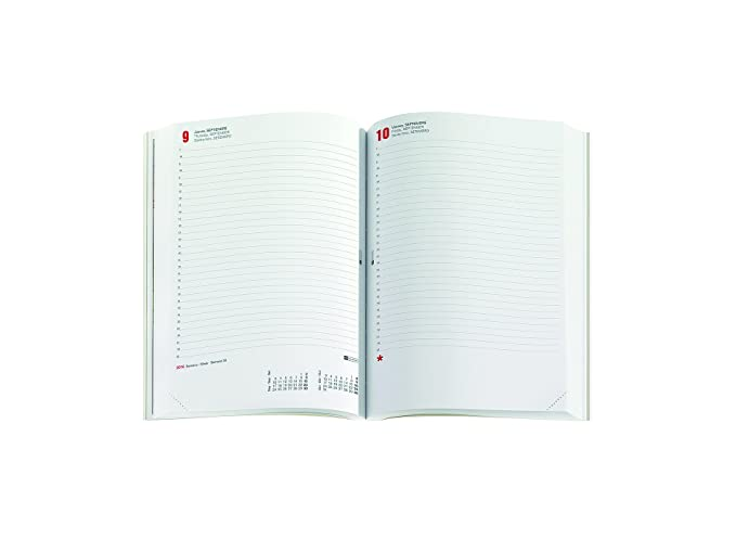Amazon.com : Miquel Rius 936873 - Notebook Day/Page 15.5x21 ...
