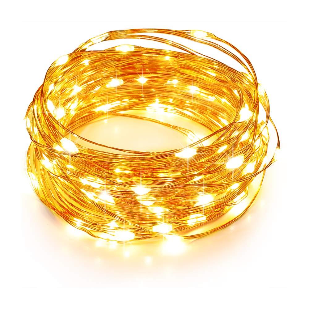 Tao Tronics LED String Lights