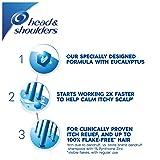Head & Shoulders Itchy Scalp Care Shampoo
