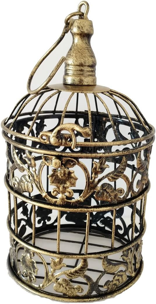 PET SHOW Round Birdcages Metal Wall Hanging Bird Cage for Small Birds Wedding Party Indoor Ourdoor Decoration 9.8INCH and 13.8INCH Color Black White Bronze Pack of 1