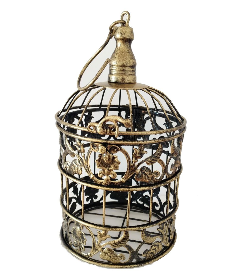 PET SHOW Round Birdcages Metal Wall Hanging Bird Cage for Small Birds Wedding Party Indoor Ourdoor Decoration 9.8INCH and 13.8INCH Color Black White Bronze Pack of 1 BysitShow