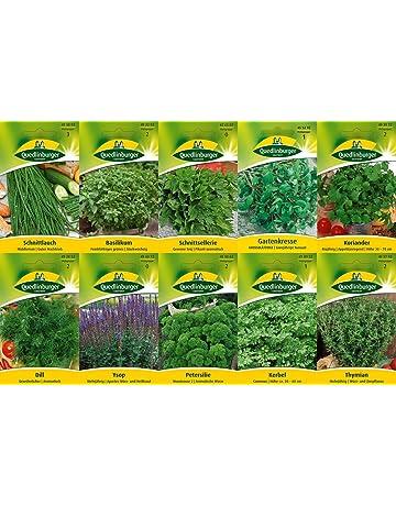 10 variedades | Surtido de semillas de hierbas | adecuado para principiantes | ahora precio especial