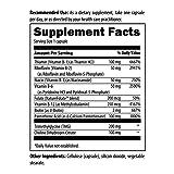 Designs for Health B-Supreme - B Vitamin Complex