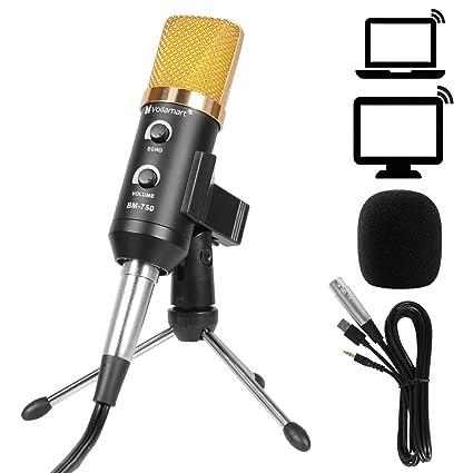 Review Voilamart Condenser Microphone, Plug