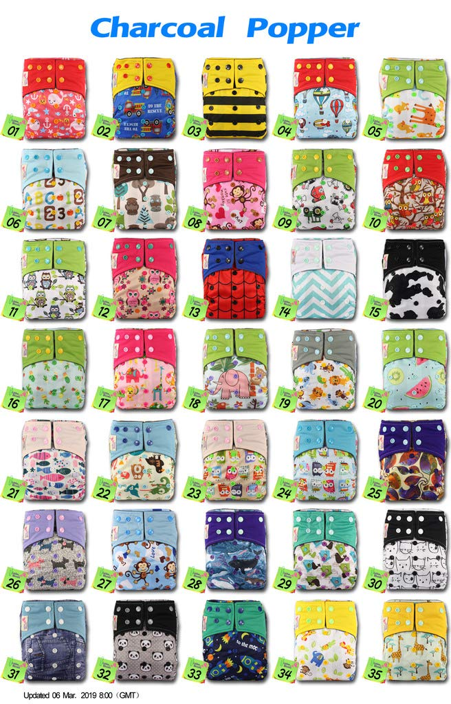 Littles /& Bloomz Pattern 10 Reusable Pocket Real Cloth Nappy Washable Diaper Bamboo Charcoal with 1 Microfibre Insert