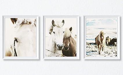 Modern Photography Wall Art