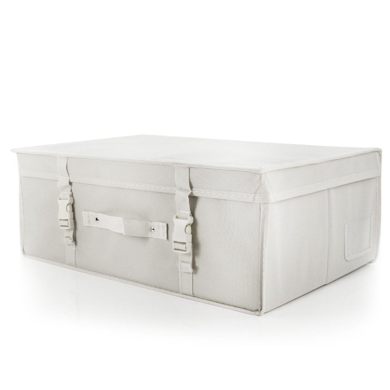 Hangerworld Caja de Ordenación 35x55x20cm Transpirable con Tapa Protege tu Traje de Novia Blanco product image
