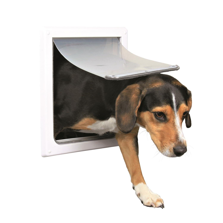Chatière pour chiens, 2 positions, Petit - Moyen, blanc: Amazon.fr ...